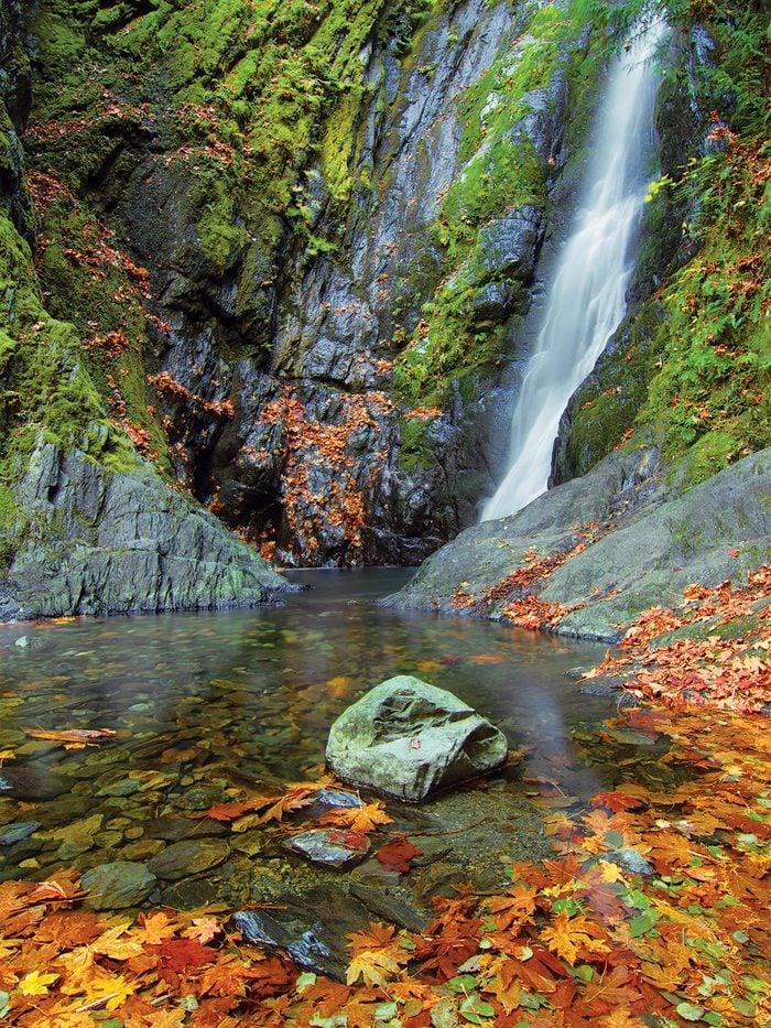 Fall Pictures - Matt Ferguson
