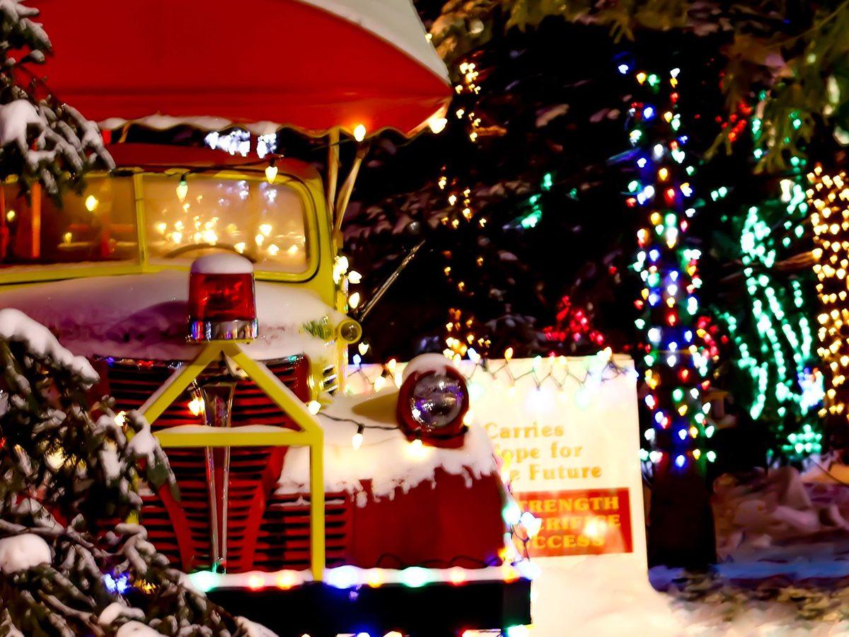 Winter Wonder Forest lights display in Edmonton