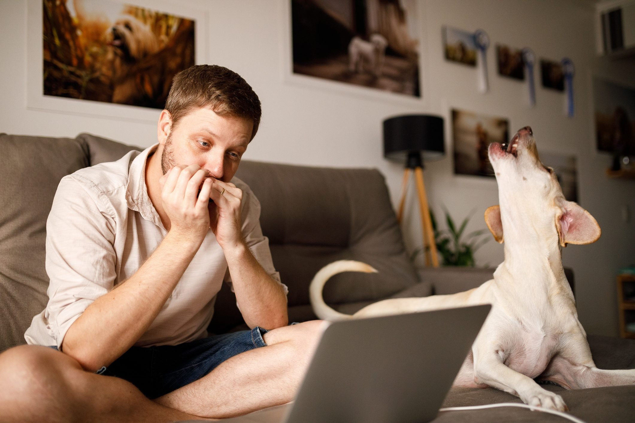 Man and his dog singing on a video call
