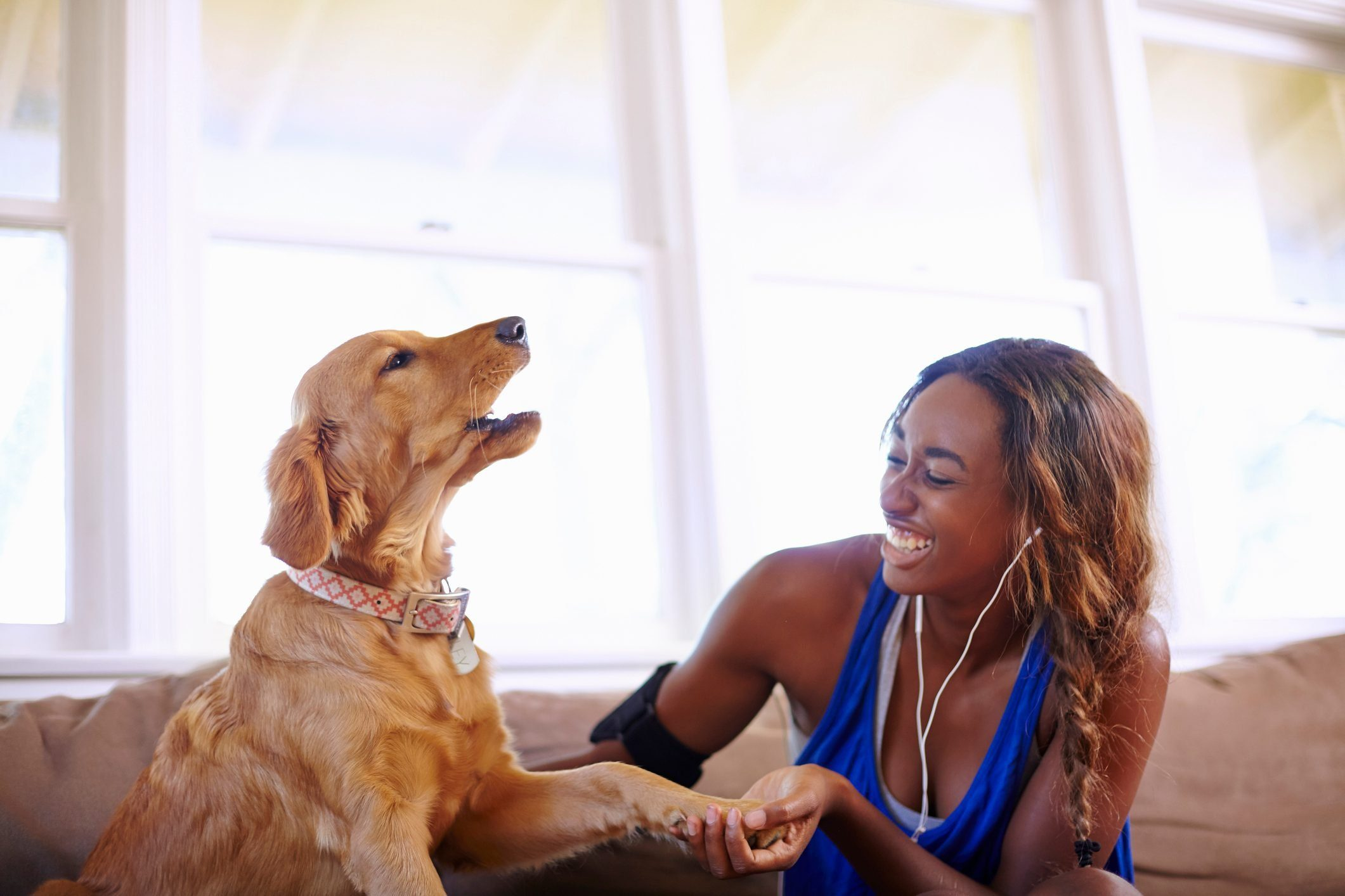 Young woman taking a training break, petting dog in sitting room