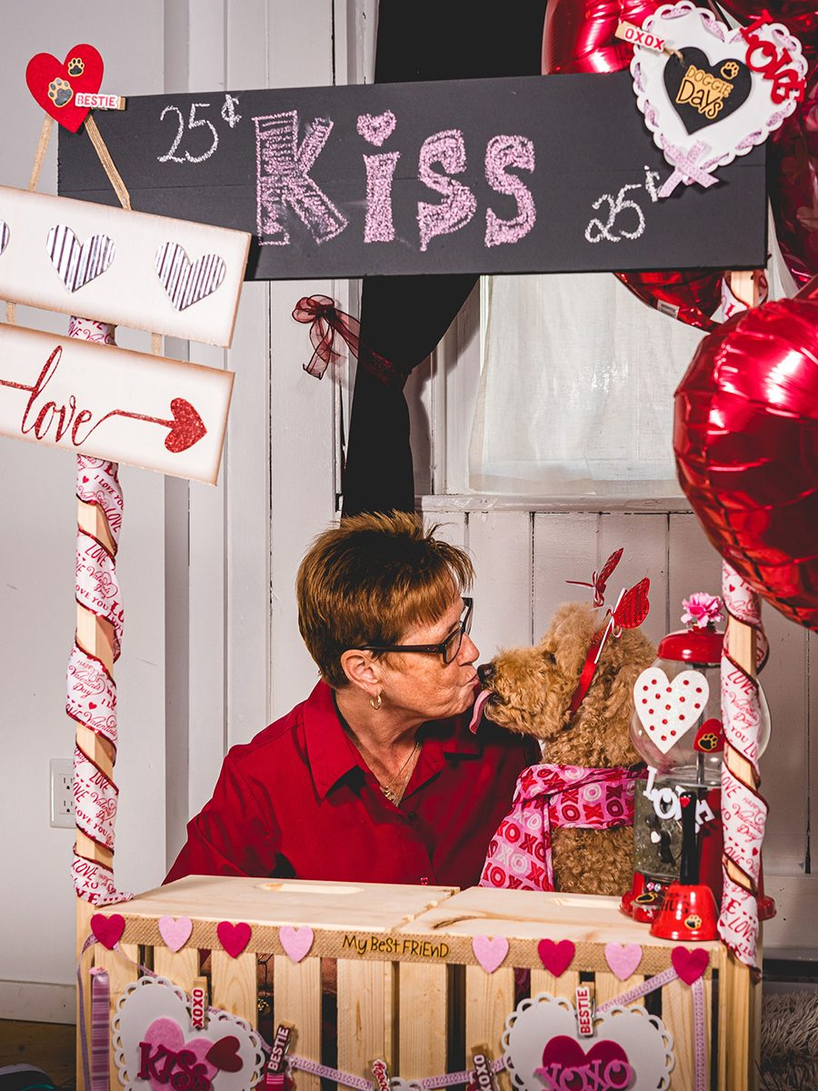 Dog and kissing booth