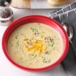 Slow Cooker Cheesy Broccoli Soup