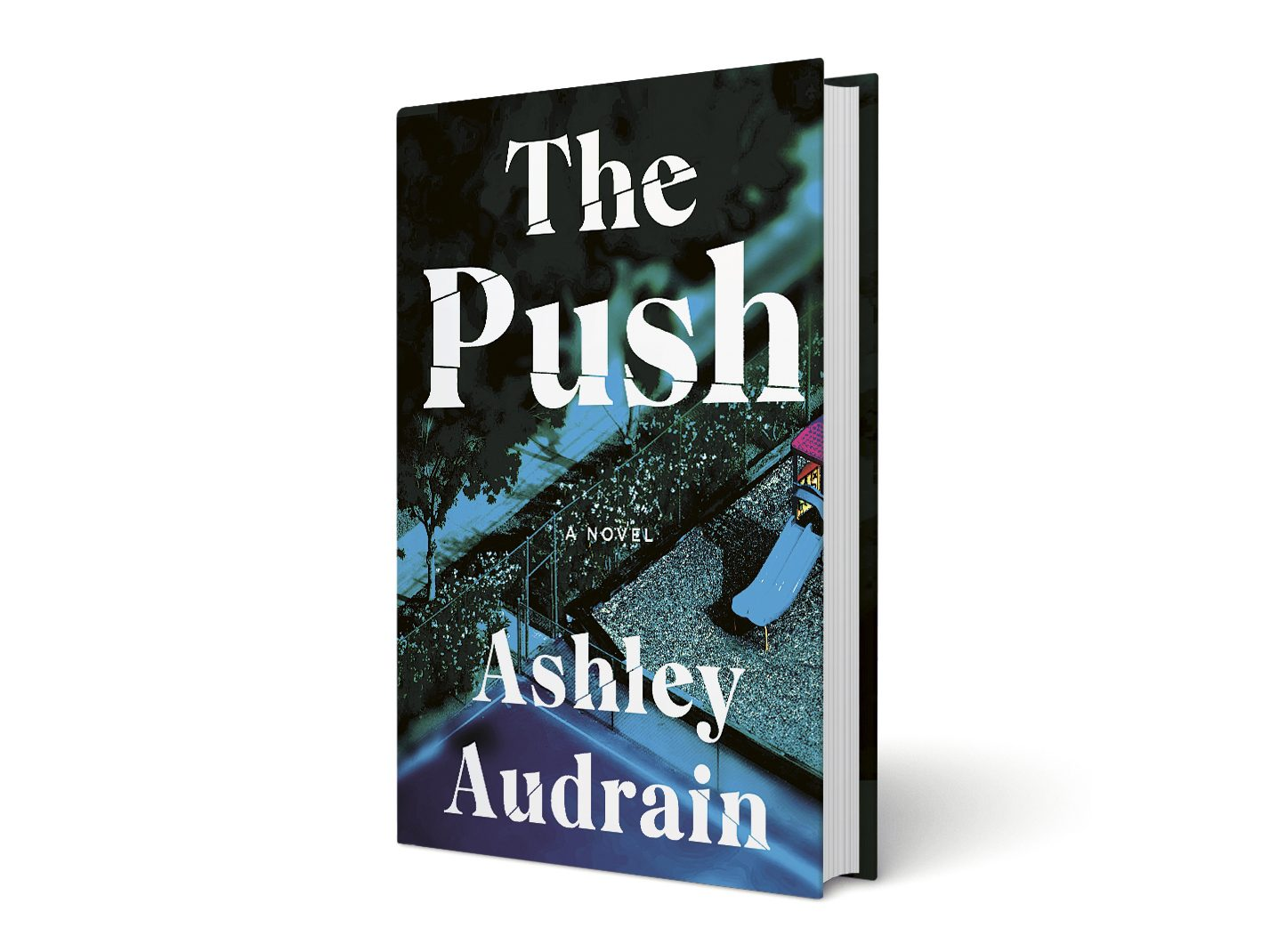 Cover of The Push by Ashley Audrain