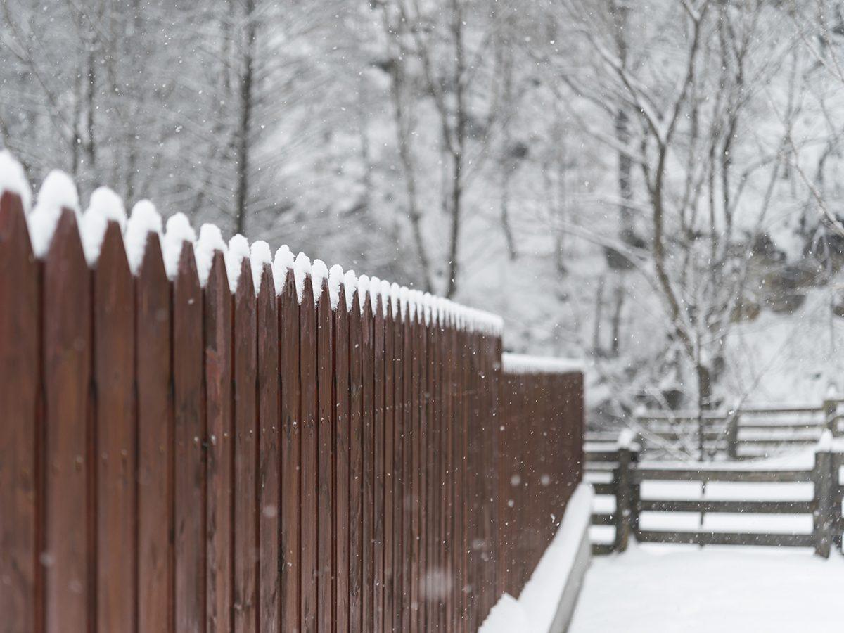 Stay Warm COVID-19 Winter - Build Windbreak Fence in your back yard