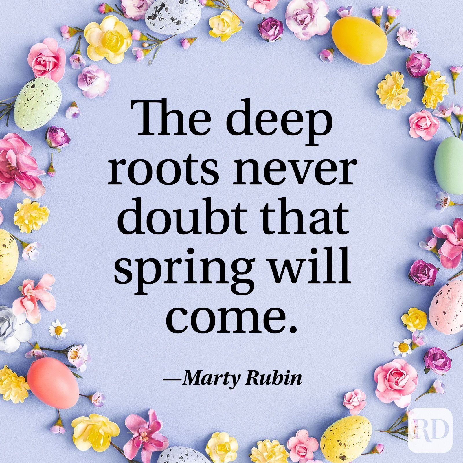 """""""The deep roots never doubt that spring will come."""" — Marty Rubin"""