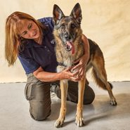 Meet the Dogs That Can Sniff Out Cancer