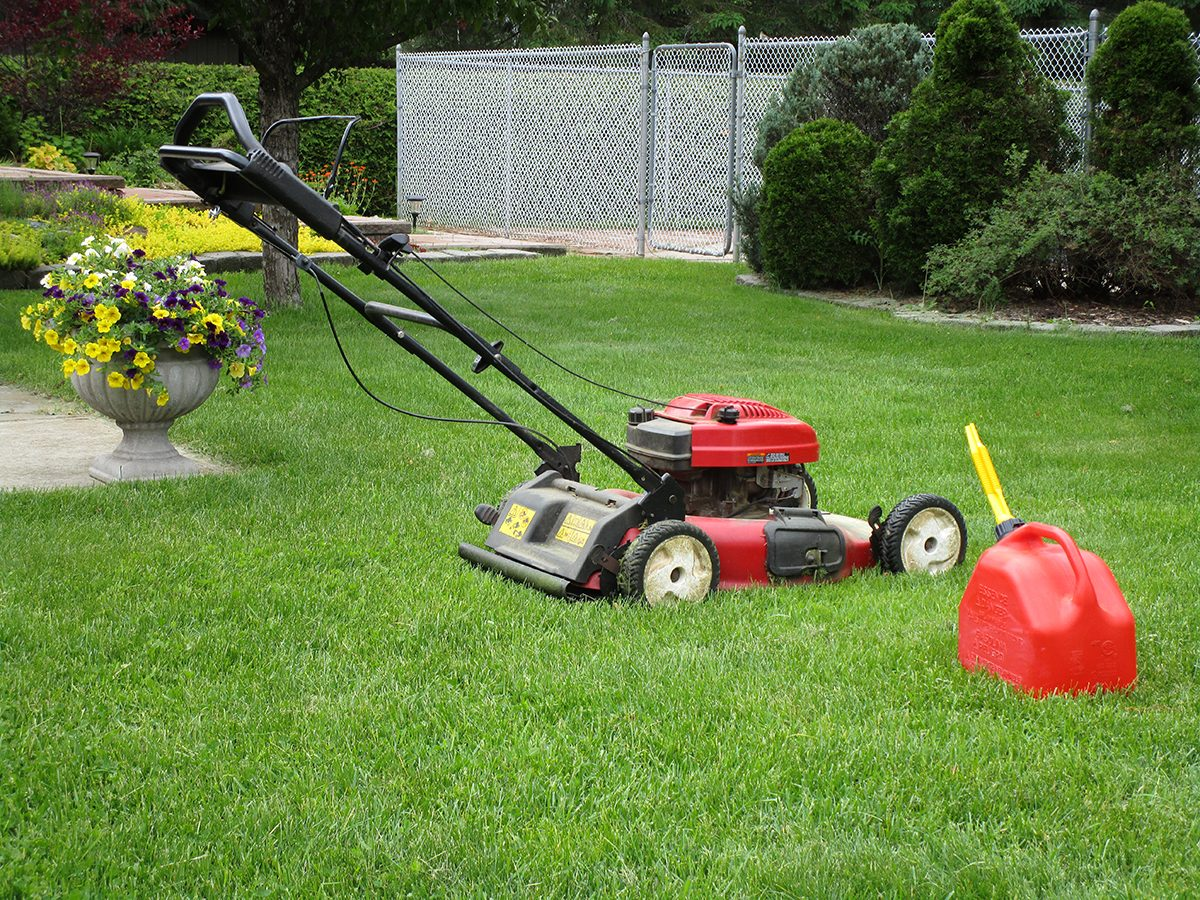 My Happy Place - Back Yard Lawn Mower