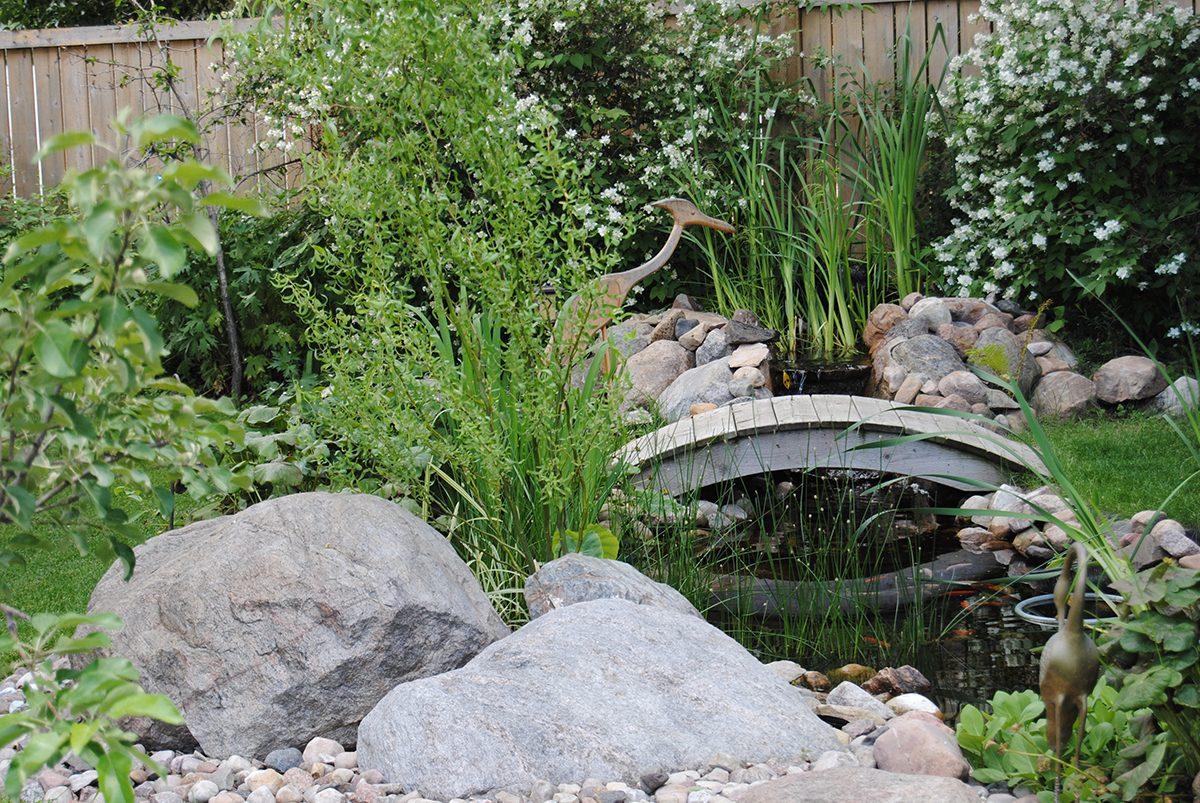 My Happy Place - Backyard Pond