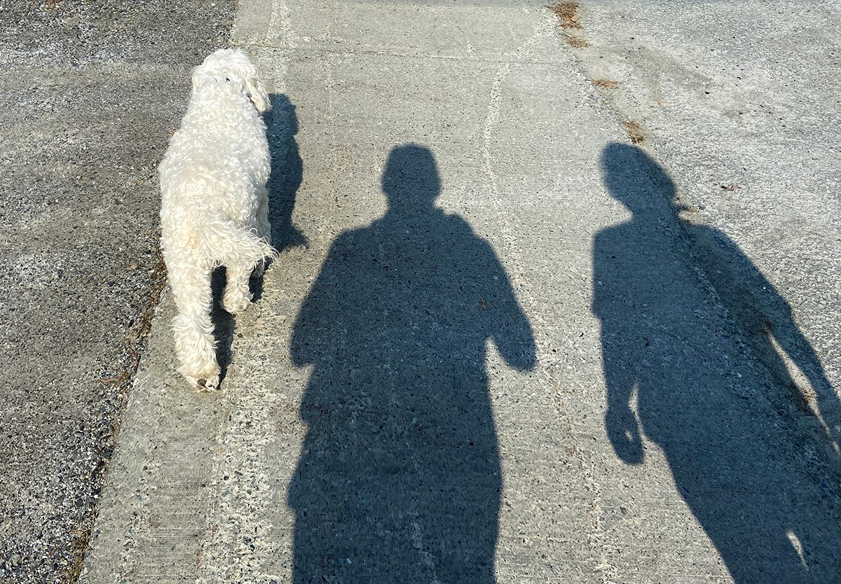 My Happy Place - Dog And Two Shadows