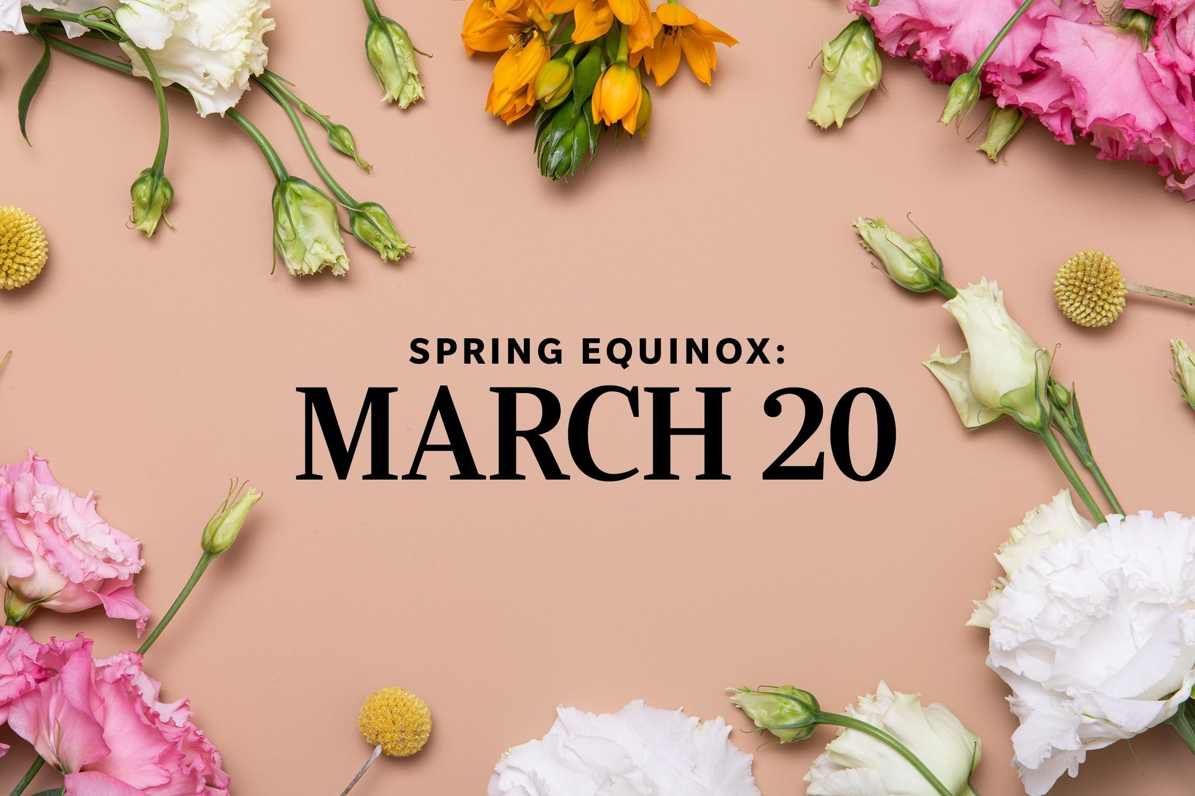 """floral background with text that says """"Spring equinox: march 20"""""""