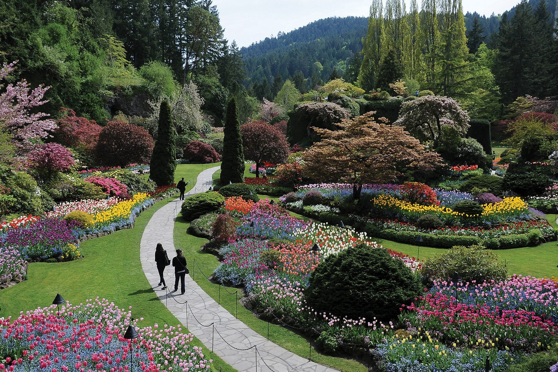 Sunken Garden At The Butchart Gardens Botanical Gardens