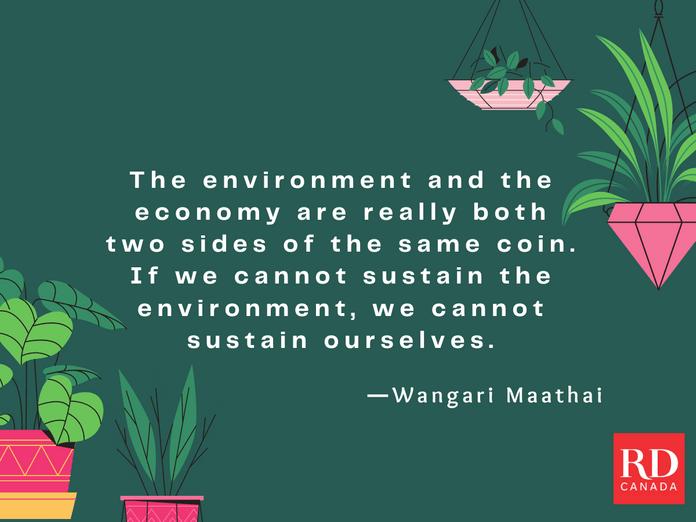 Short Inspirational Quotes - Wangari Maathai