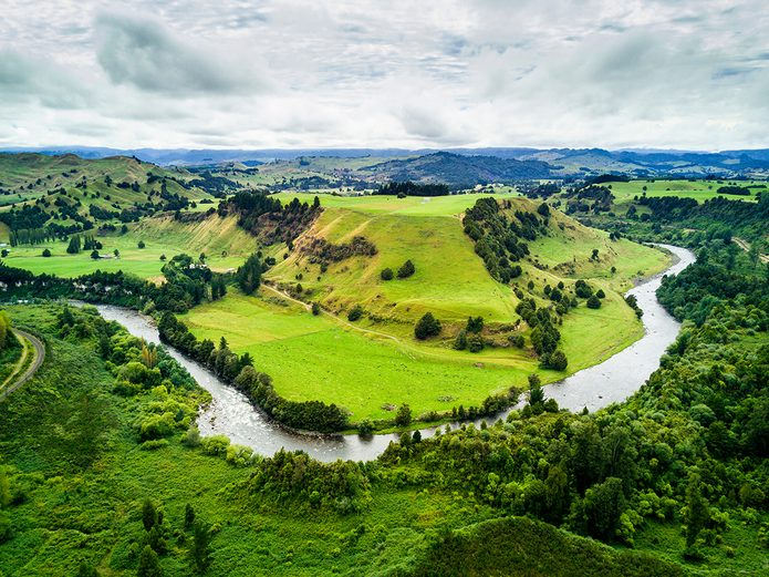 Earth Day Quiz - Whanganui River