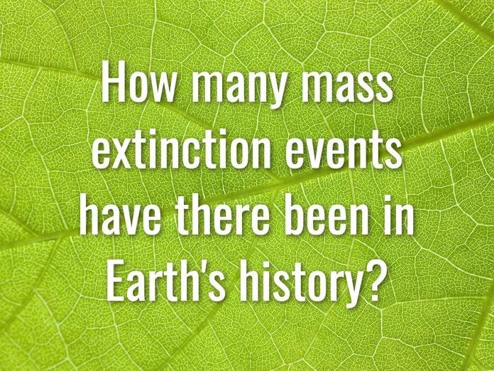 Earth Day Quiz - Question 13