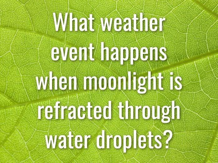 Earth Day Quiz - Question 8