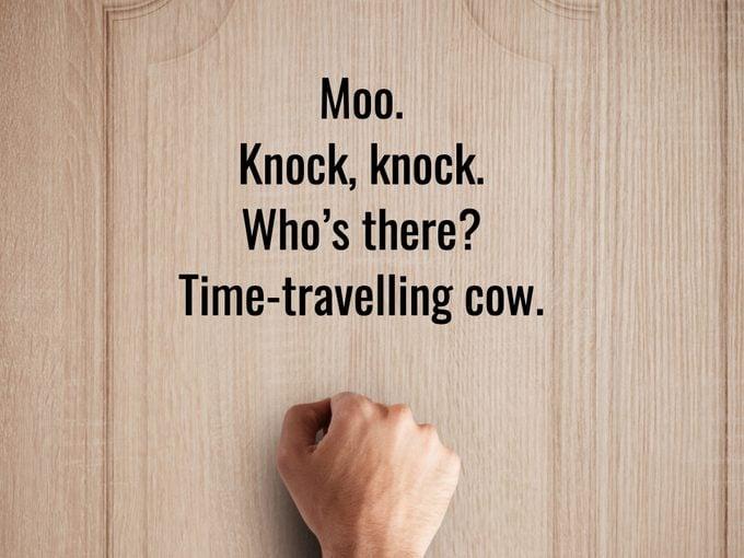 Funniest Knock Knock Joke Time Travelling Cow