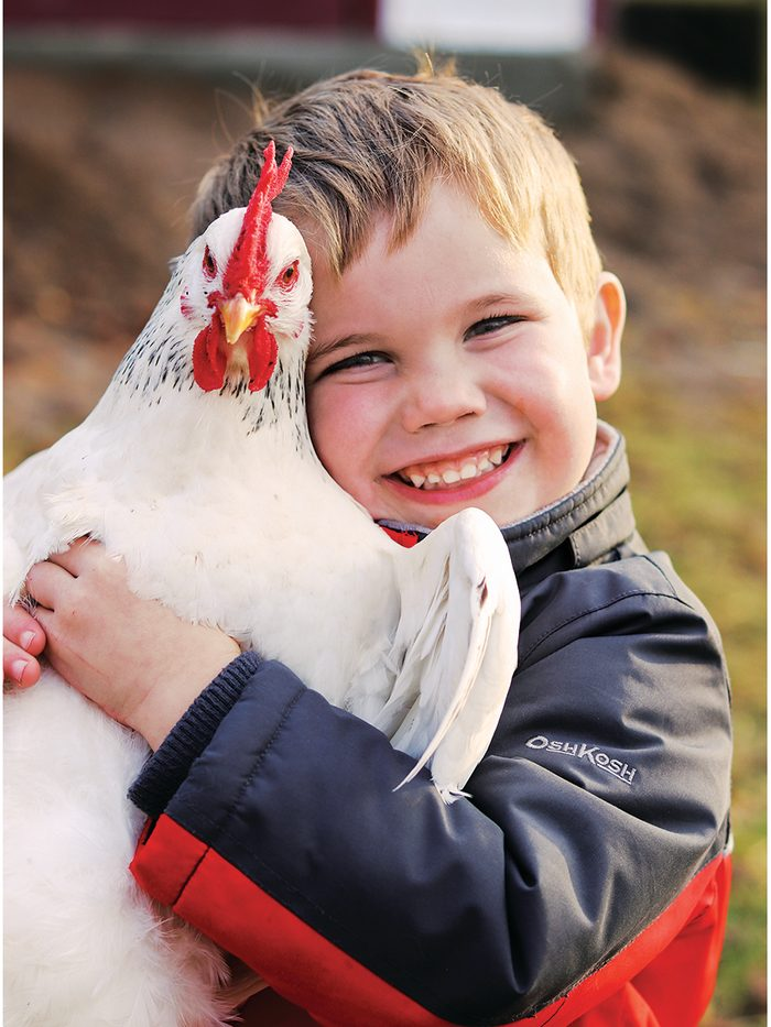 Our Canada Share Your Canada Photo Contest Chicken - Boy hugging pet chicken