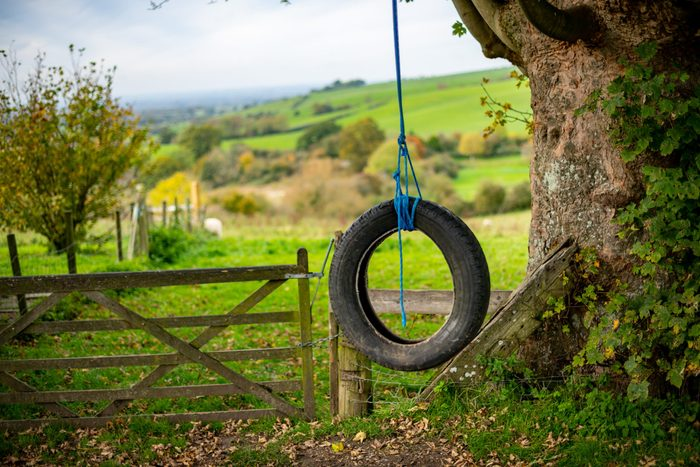 Attracting mosquitoes - Tire swing