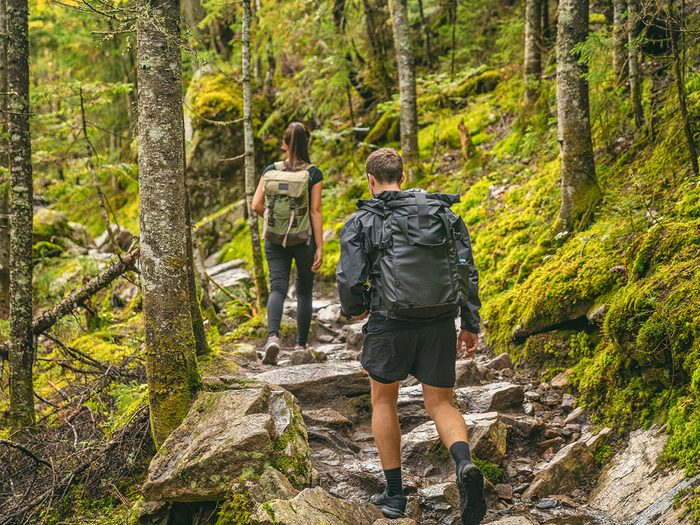 Hiking for beginners - guided hike in Quebec