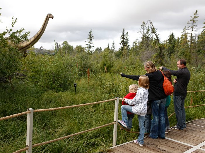 Day trips from Edmonton - Jurassic forest