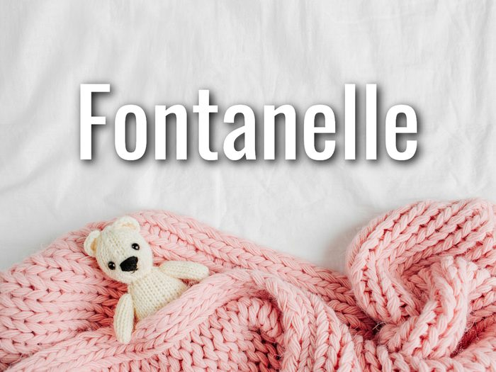 Baby Terms - Fontanelle