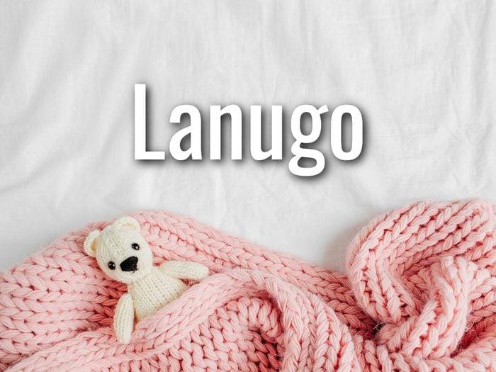 Baby Terms - Lanugo