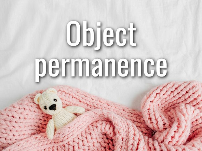 Baby Terms - Object Permanence