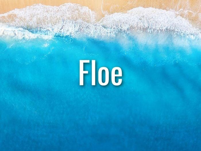Ocean Words - Floe