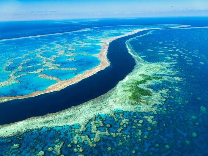 Ocean words - Great Barrier Reef