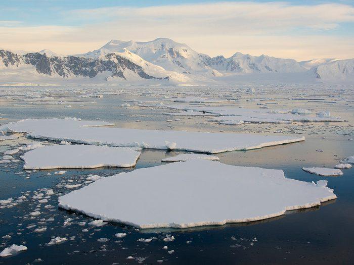 Ocean words - ice floes in Antarctica