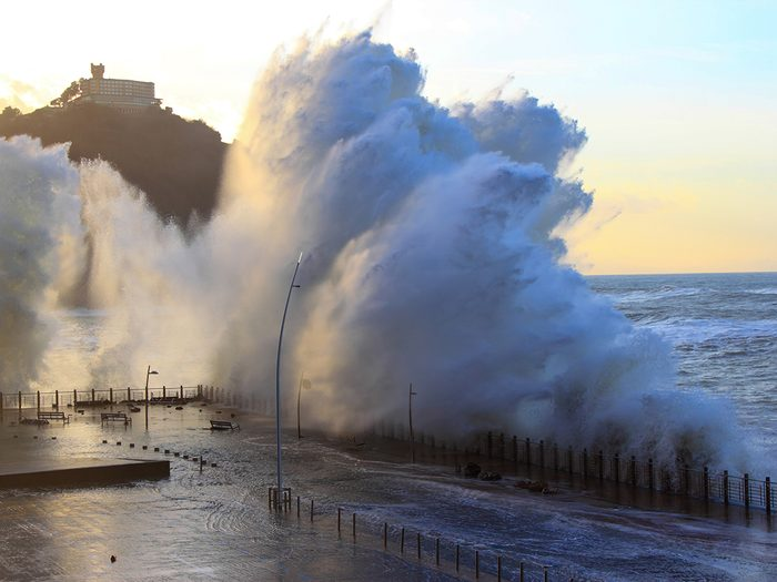 Ocean words - tsunami wave crashing