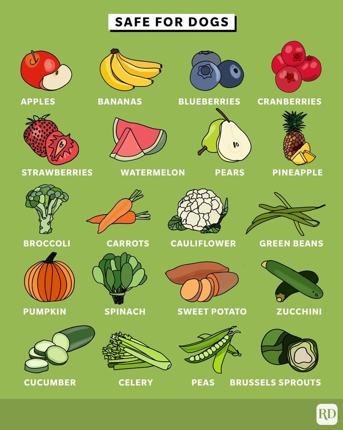 Fruits and vegetables safe for dogs to consume infographic