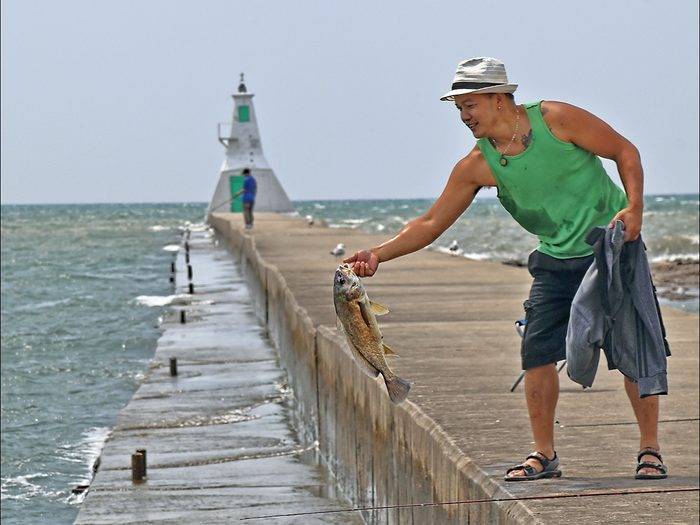Candid photography - Catch and release