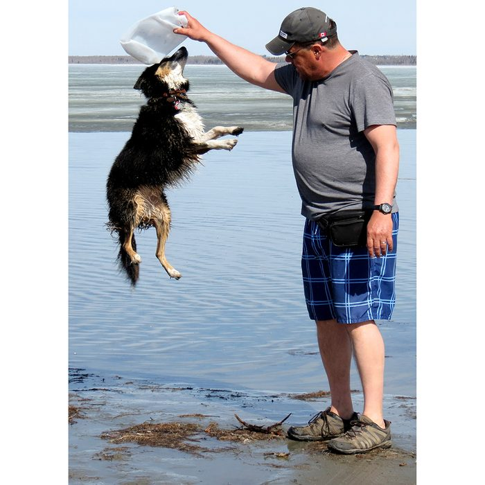 Candid photography - Dog jumping on beach