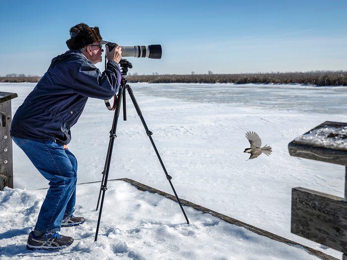 Candid photography - Photographer chickadee