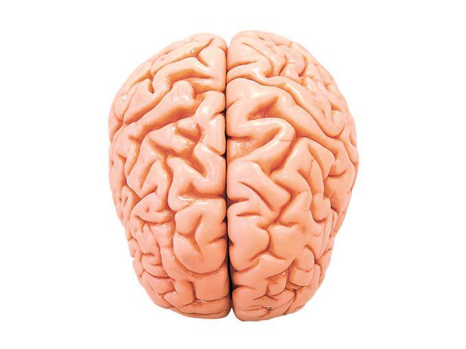 Early signs of dementia - brain model