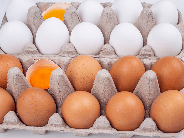 Diffrence Between Brown And White Eggs
