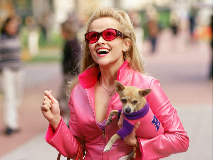 Movies Better Than The Book - Legally Blonde