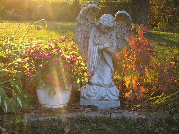 Sunset pictures - garden angel
