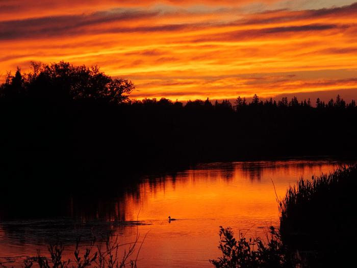 Sunset pictures - Saskatchewan river at sunset
