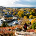 Common Newfoundland Sayings, Decoded