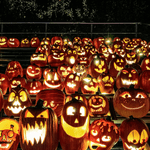 20 Cool Jack-o'-Lanterns From Across Canada